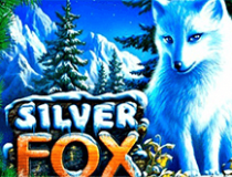 Отзывы касательно Silver Fox на казино X