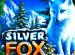Отзывы относительно Silver Fox на казино X