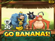 Платный умная голова Вперед, Бананы!